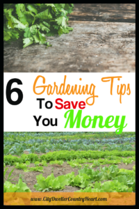 6 Gardening Tips To Save You Money