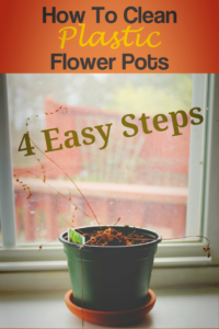 How to Clean Plastic Flower Pots