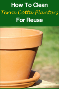 How to Clean Terra Cotta Planters
