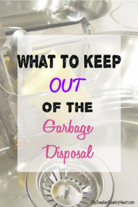 What to Keep Out of the Garbage Disposal